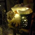 Gartenlampe_1000